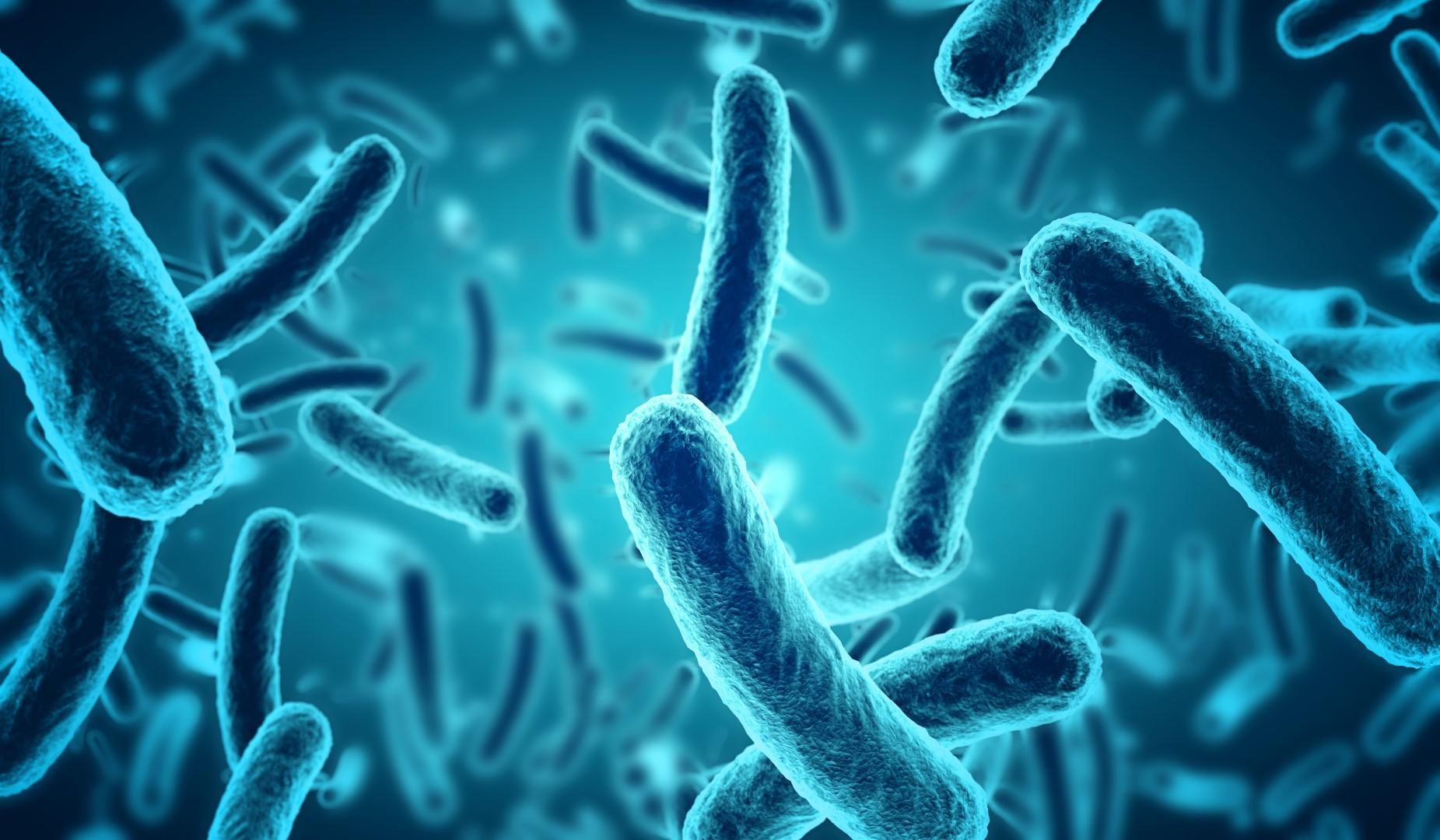 Blauwe-bacteri%C3%ABn.jpg