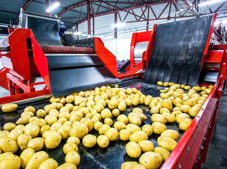 eiwitten aardappel