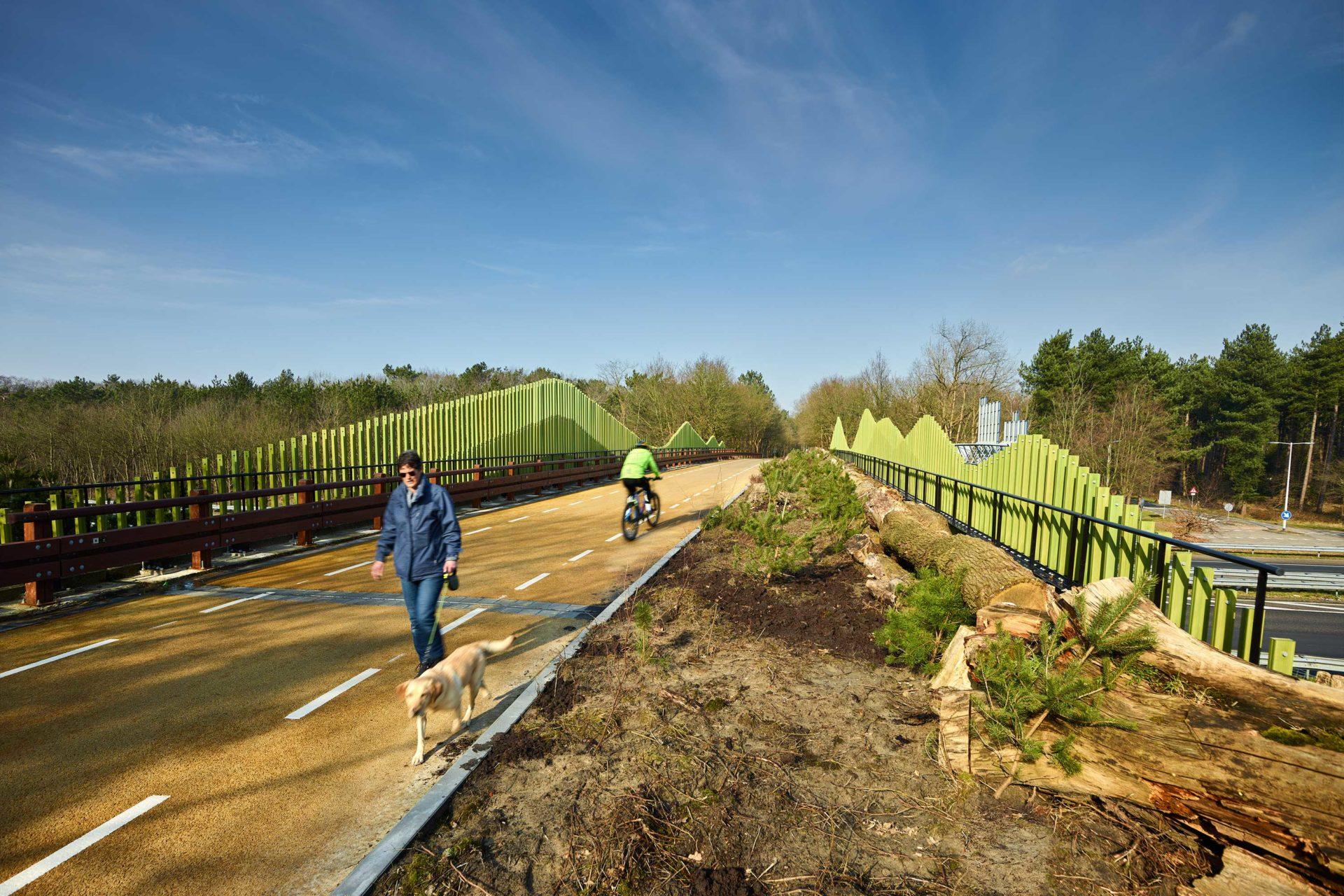Zoomlandviaduct: biobased showcase over de snelweg
