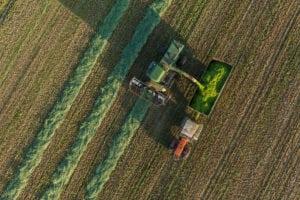 Grootschalige landbouw in Polen