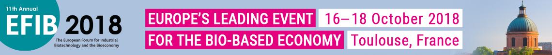 EFIB 2018 Banner Homepage