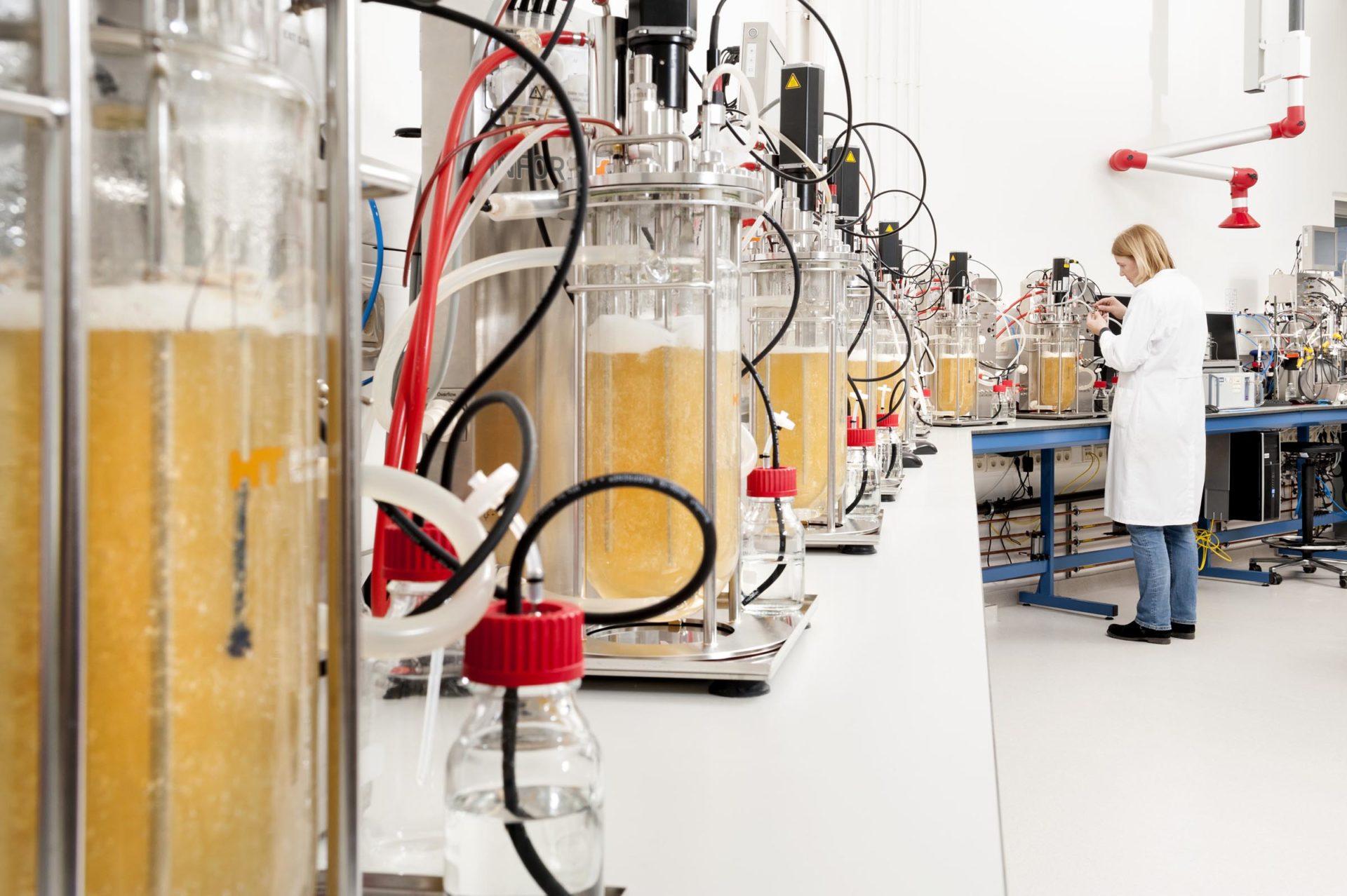 'Biobased is al lang volwassen'