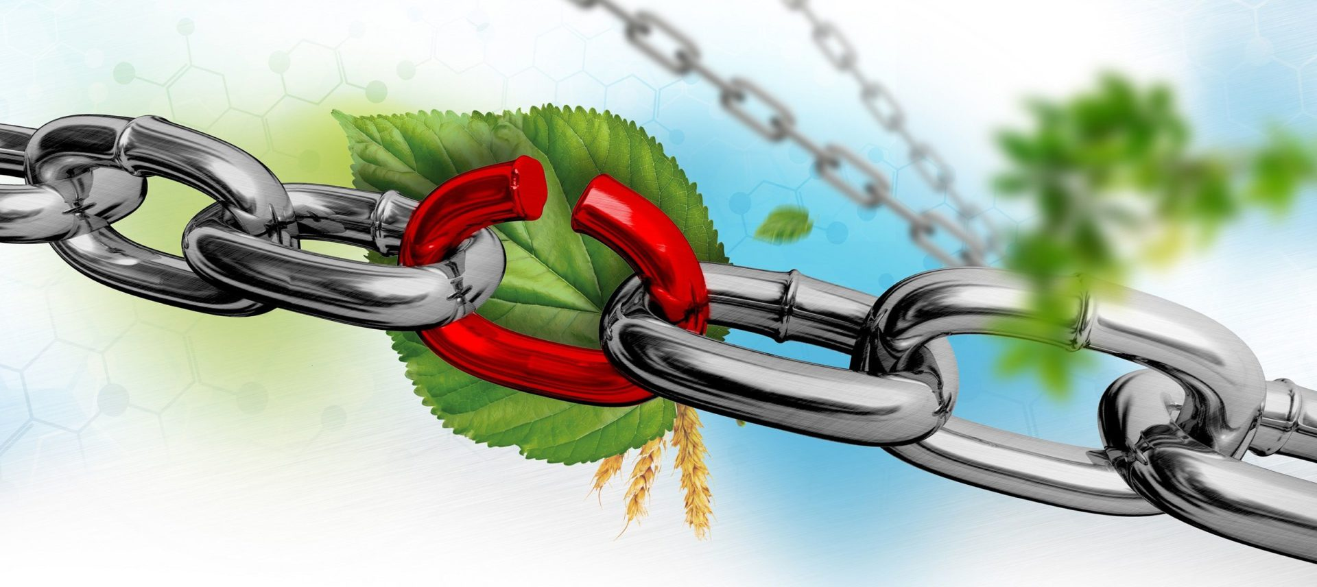 Zwakke schakels bedreigen biobased en circulaire ketens