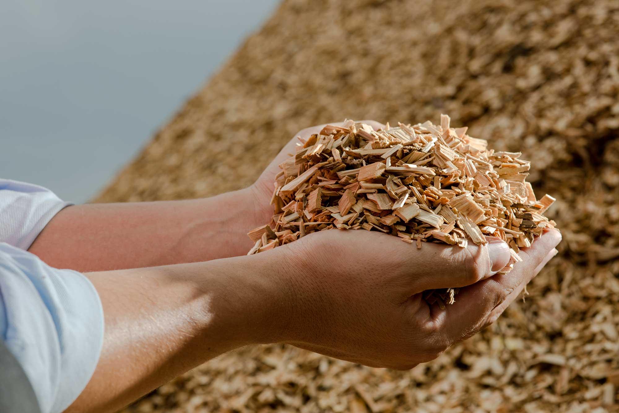 Hand met houtsnippers: biomassa