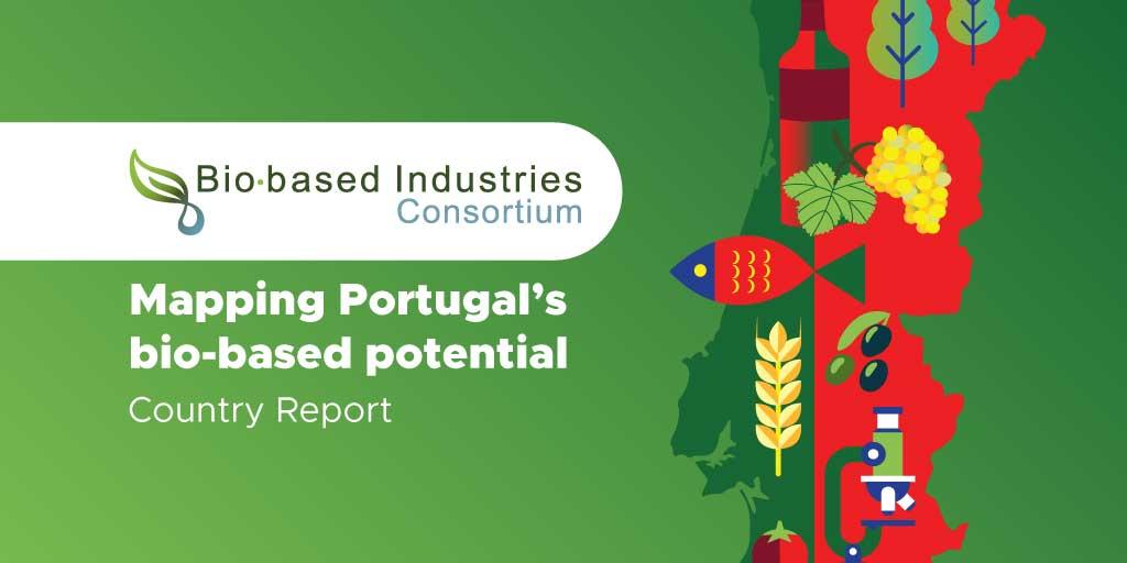 BIC Landenrapport Portugal