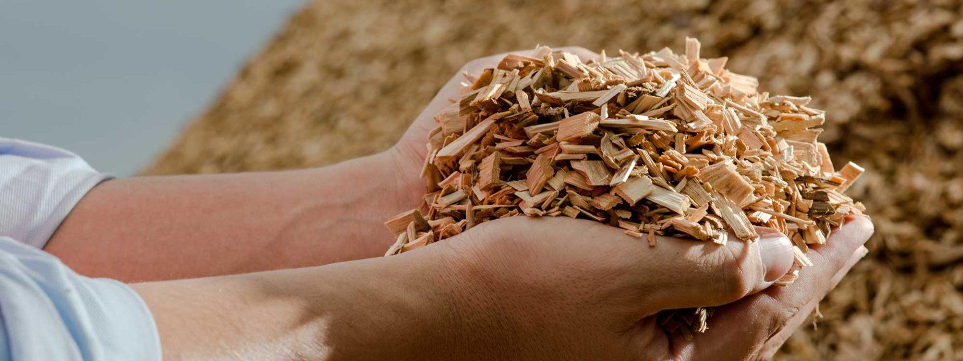 Handen met biomassa